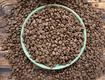 Cà phê rang xay nguyên chất, cà phê hạt 100 sạch cho đối tác xuất khẩu