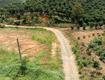 Khu nghỉ dưỡng 3,6 ha, view đồi, đường lớn, cách trung tâm bảo lộc 13km...