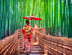 Nhật Bản: núi Phú Sĩ  Thủ Đô TOKYO 5 Ngày