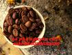 Cà phê hạt nguyên chất giá sỉ tại Bình Dương