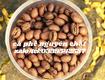 Cung cấp cà phê hạt giá sỉ nguyên chất tại Bình Dương