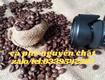 Cung cấp cà phê nguyên chất cao cấp tại Bến Cát Bình Dương