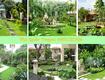 Dịch vụ vệ sinh sân vườn