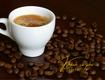 Cà phê hạt esprsso, cà phê hạt pha máy giá bán buôn 2 năm không...