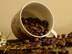 Cà phê hữ cơ thải độc,mua cafe organic ở đâu ngon tại biên hòa, đồng...