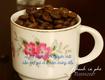 Cafe rang mộc nguyên chất phân phối cho đại lý giá sỉ ổn định 2 năm tại Đồng...