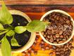 Cung cấp cafe hạt nguyên chất giá sỉ ổn định tại Thủ Dầu Một,Bình Dương