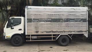 Xe tải Hino 3,5 tấn Euro 4 Chào hè