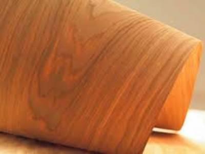 Ván ép chịu nước đóng nội thất, ván ép phủ veneer gỗ 2