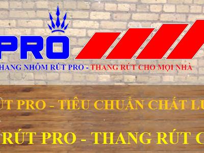 Thang nhôm rút Pro đã có tại hệ thống đại siêu thị Vinmart trên cả nước 6