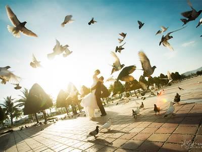 Làm Visa nhanh nhất và rẻ nhất Việt Nam 0