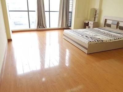 Cho thuê căn hộ đủ đồ phố Cát Linh - Hào Nam 5