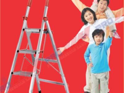 Chuyên nhập khẩu và phân phối các loại thang nhôm nhập khẩu bán tại Hải Dương 6