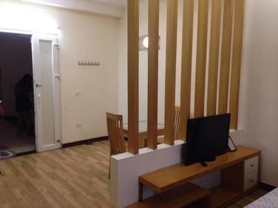 Cho thuê căn hộ đủ đồ phố Láng Hạ, diện tích 35m2 giá 6,5 triệu 3
