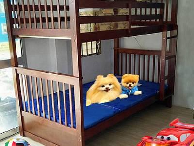 Giường tầng trẻ em xuất khẩu 1