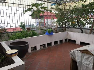 Cho thuê Nhà kinh doanh cafe,nhà hàng đẹp Phố Mai Anh Tuấn,Hoàng Cầu 90m2 x 5 tầng 11