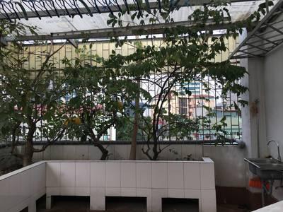 Cho thuê Nhà kinh doanh cafe,nhà hàng đẹp Phố Mai Anh Tuấn,Hoàng Cầu 90m2 x 5 tầng 12