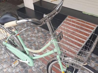 Xe đạp trâu cổ điển MARUISHI  Japan 2