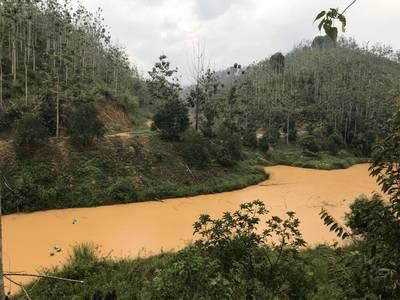 Đất nông nghiệp 50 ha ở Đạ Rsal, Đam Rông, Lâm Đồng 7