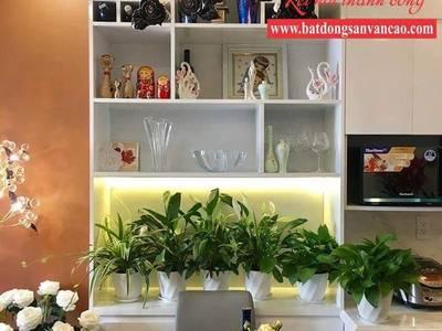 Cho thuê căn hộ, phòng ở SHP Plaza Lạch Tray, Văn Cao, Lê Hồng Phong, Vincom, Waterfront City 3