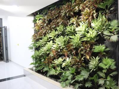 Bán nhà mới, vị trí đẹp, nội thất cao cấp nhập khẩu, Dương Quảng Hàm 8