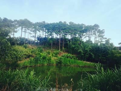 Bán đất 100m , mặt tiền quốc lộ 27, khuôn viên rộng 18.000m ,vị trí đẹp huyện Đức Trọng. 11