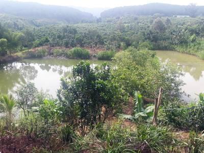 Bán đất 100m , mặt tiền quốc lộ 27, khuôn viên rộng 18.000m ,vị trí đẹp huyện Đức Trọng. 12