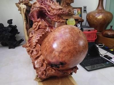 Rùa và rồng nu hương 8