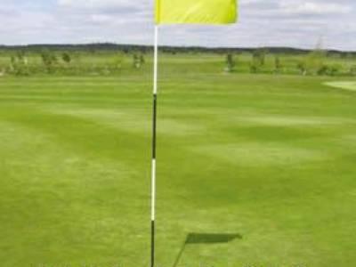 Lá cờ golf vải có cán nhựa 5