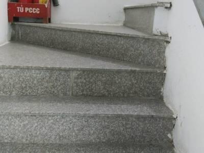 Cần cho thuê 06 Căn hộ mini Tòa nhà Hưng Gia - 438B Trương Định 08 tầng 25 căn hộ 9