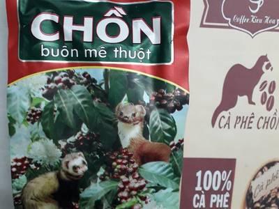 Bán Cafe ngon Cafe chính gốc Buôn Ma Thuột tại Hà Nội và các tỉnh phía Bắc 9