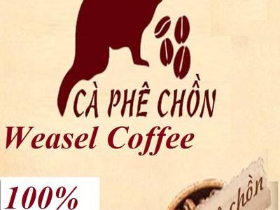 Bán Cafe ngon Cafe chính gốc Buôn Ma Thuột tại Hà Nội và các tỉnh phía Bắc 13