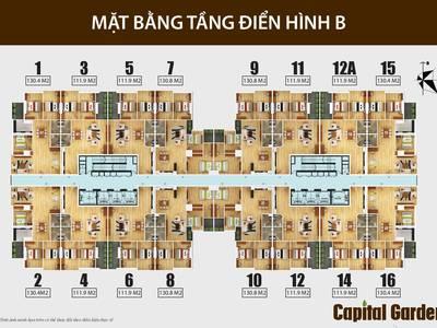 Trực tiếp CĐT cho thuê căn 2, 3, 4 PN, 9-10-12 tr/tháng tại CC Capital Gaden 102 Trường Chinh 6