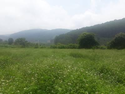 Bán 1.100m2 đất xã Tà Nung,Đà Lạt 400m2 thổ cư,view đồi núi tuyệt đẹp,hẻm xe hơi. 4