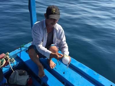 Du lịch biển đảo câu mực nha trang 4