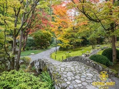 Phong cảnh vườn cấy 3d- gạch tranh 3d 7