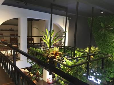 Sang Nhượng quán cafe, nước ép tại phố Bích Họa, 37 Phùng Hưng, Hoàn Kiếm 8