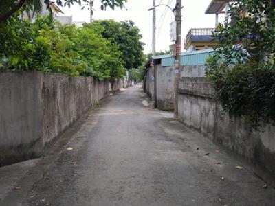 Đất mặt đường thông 208 0