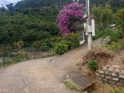 Lô đất 1.500m2 đường Khe Sanh view đồi   thung lũng tuyệt đẹp. 4