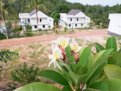Bất động sản Emerald Land Quy Nhơn chào bán và hợp tác đầu tư các khu đất tại thành phố Quy Nhơn 2