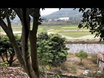 Cần bán đất vườn đồi, trang trại tại xã Sông Khoai, Thị Xã Quảng Yên, Quảng Ninh 0