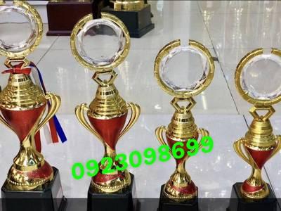 Cúp bóng đá, cúp giải thưởng quần vợt, cúp lưu niệm 6