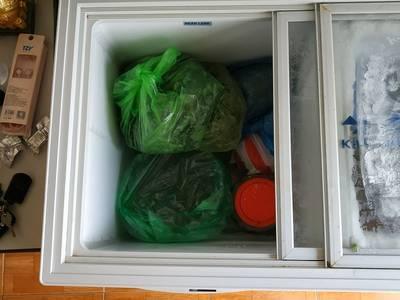 Cần bán tủ Cấp Đông Hòa Phát dàn đồng 2