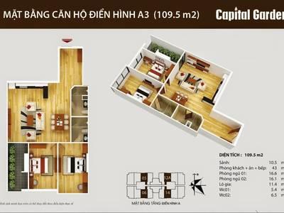 Ban quản lý cc Capital Garden 102 Trường chinh cho thuê căn hộ mới 100 2-4PN đủ đồ chỉ 10-12tr/th 11