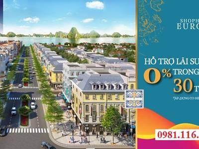 5 Lý do nên đầu tư shophouse khách sạn mini tại Hạ Long 1