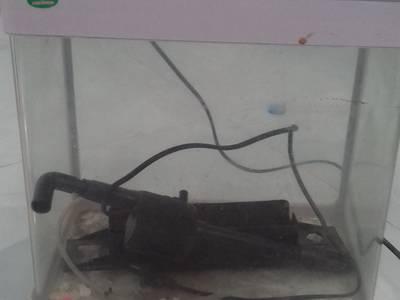 Cần bán thanh lý tủ kệ tivi, bể cá, tủ gỗ kê bể cá 2
