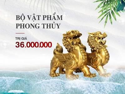 Cần Bán Căn Hộ TMS Luxury Quy Nhơn. LH: 0938.143.116 7