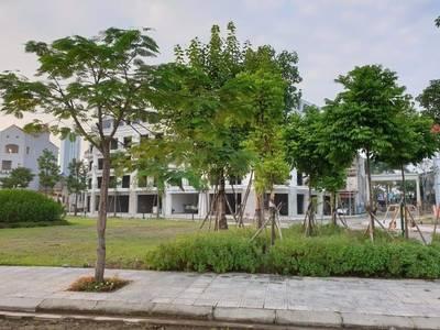 Bán đất nền Văn Giang sát Ecopark, sổ đỏ, không bắt xây, vay lãi 0 12 tháng. 108-259m2 7