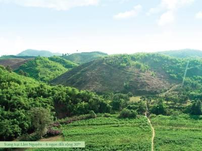 Đất trang trại tại Lâm Đồng rộng 4000m2   70 cây sầu riêng lâu năm chỉ 600tr. Sổ hồng riêng. 3