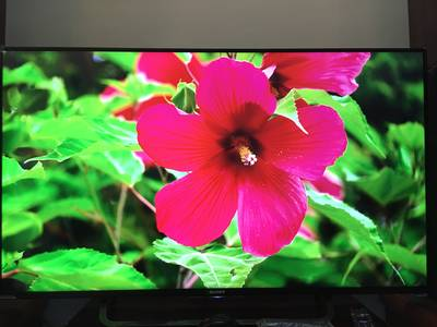 Bán tv smart androi 4k sony 49x8300